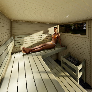 Finnish sauna 360 degree